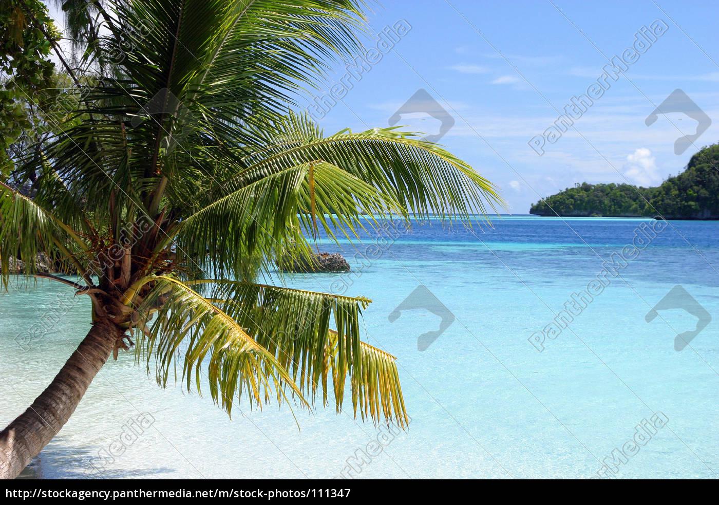 caribbean, dreams, i - 111347