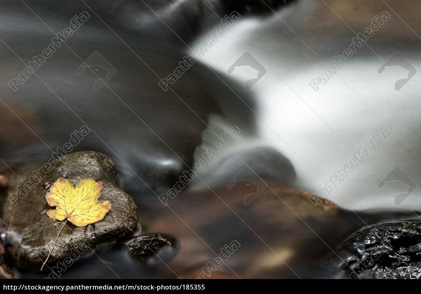 running, water, 01 - 185355