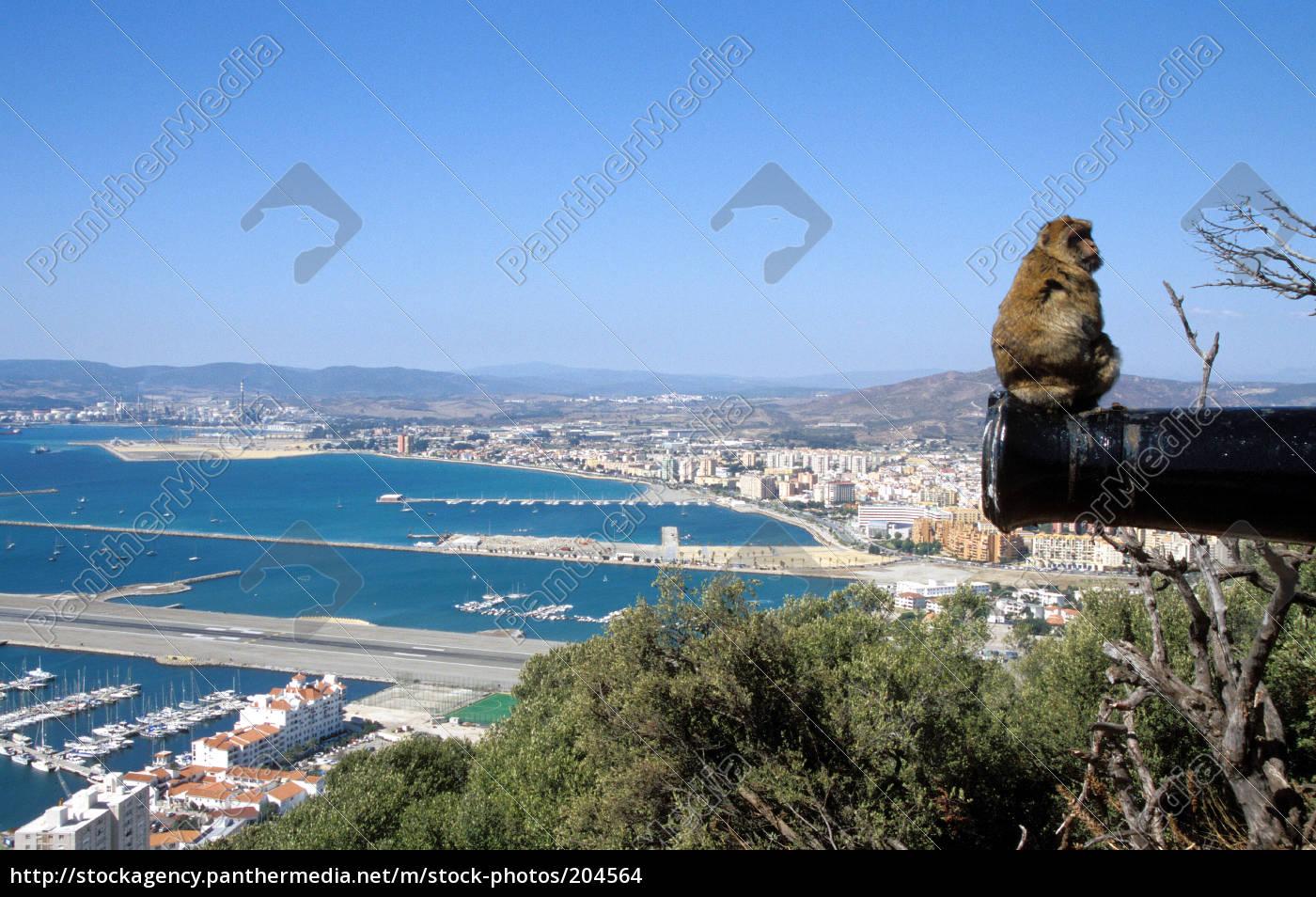 gibraltar - 204564