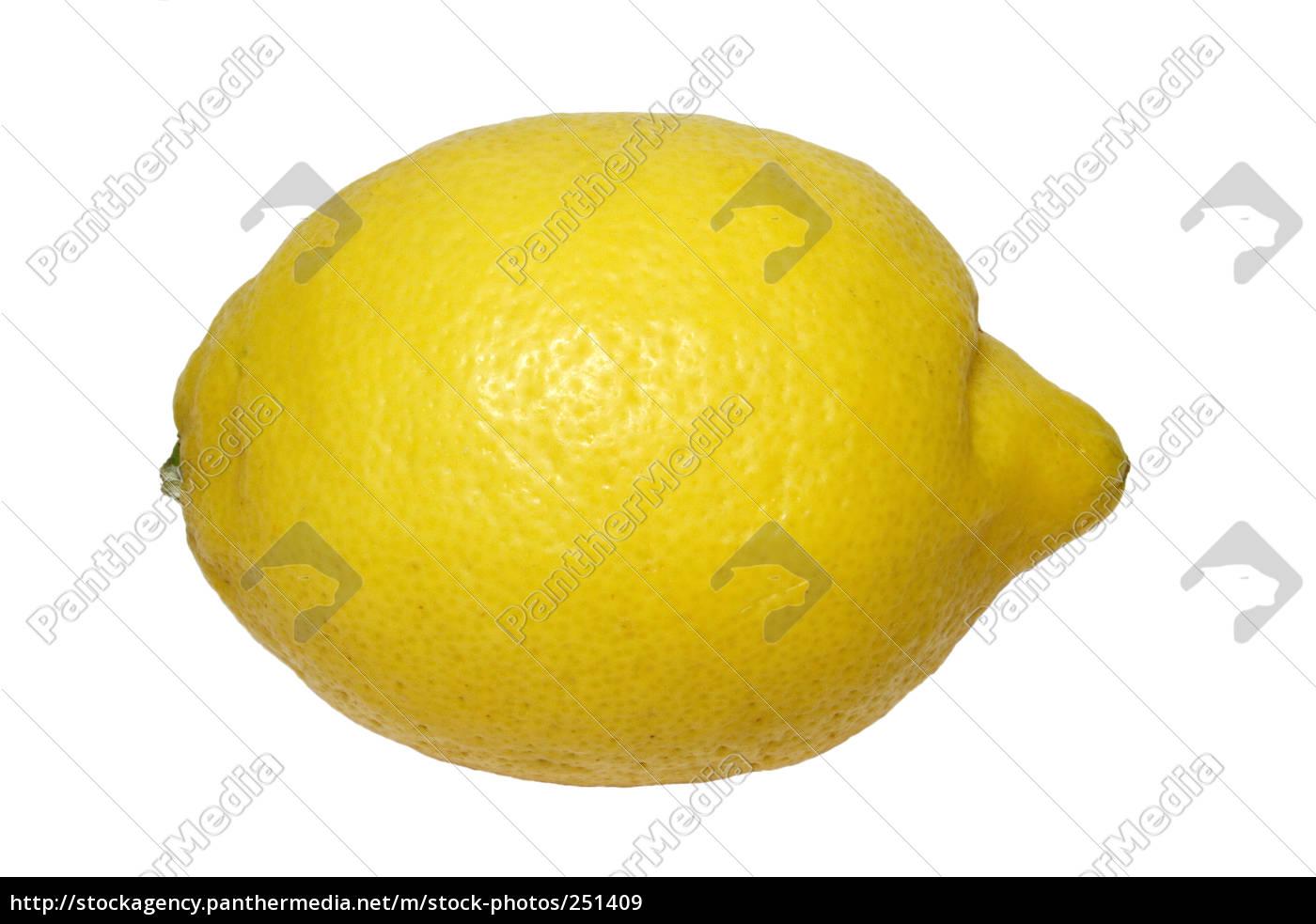 lemon - 251409