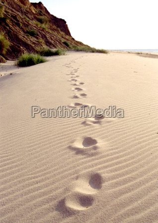 your, footprints, in, the, sand, ... - 261058