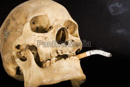 smoking, kills - 268438