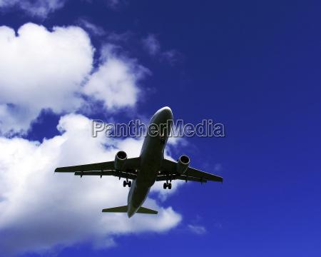 fly, away - 281605