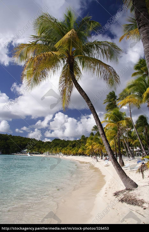 caribbean, beach - 326453