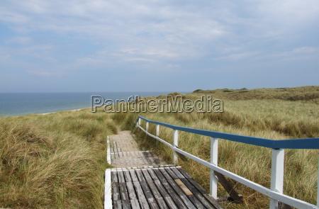 azul verde madeira praia beira mar