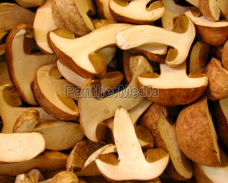 mushrooms food dish meal mushroom yellow