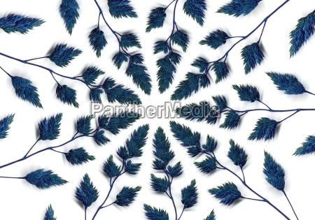 blaues gras