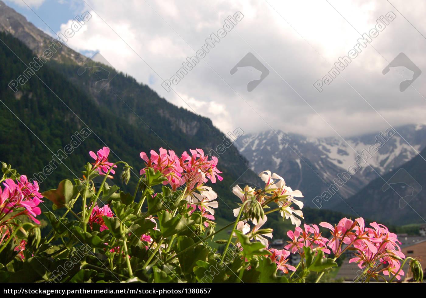 mountains - 1380657