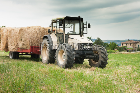 agriculture in the marche regionitaly