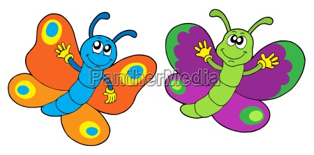 pair of funny butterflies