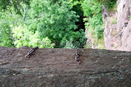 tree green usa chain ravine rise