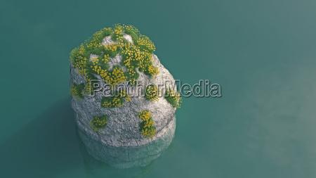medio ambiente disenyo flor planta las