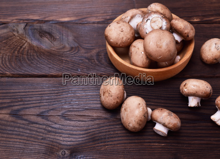 fresh mushrooms champignons